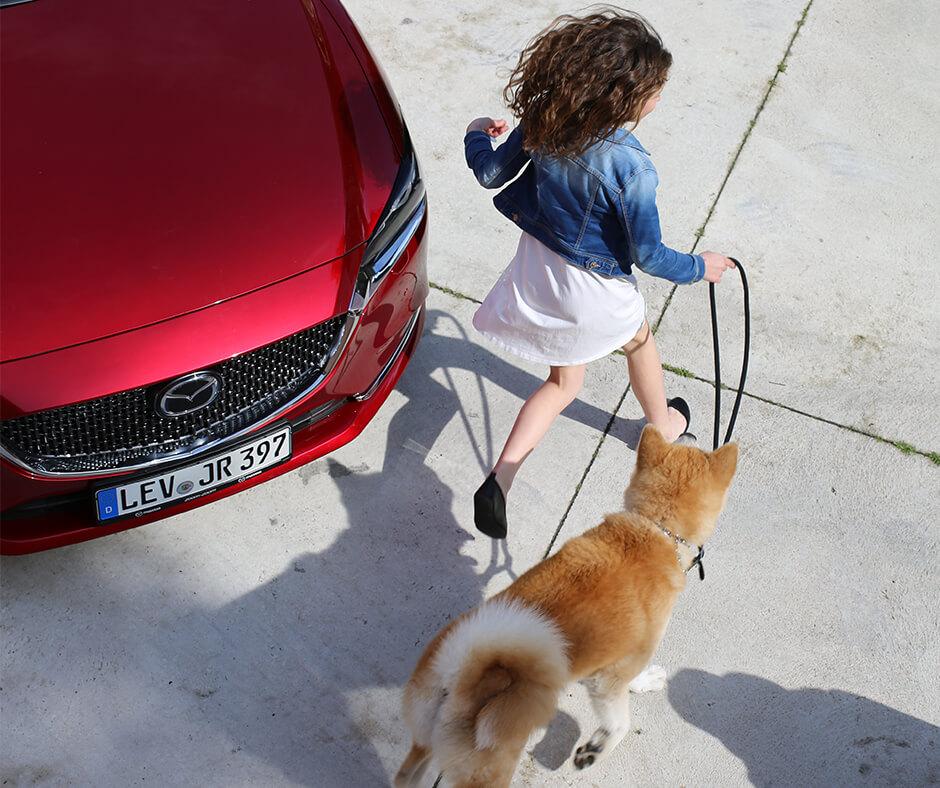 2018 Mazda6 SOM Summerseasonal IG Dog
